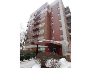 11 Balint Drive #743, Yonkers, NY 10710 (MLS #4712395) :: William Raveis Legends Realty Group
