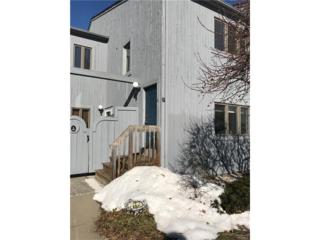 9 Hudson Point, Ossining, NY 10562 (MLS #4712958) :: William Raveis Legends Realty Group