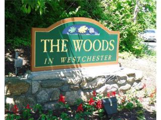 184 Woods Brooke Circle, Ossining, NY 10562 (MLS #4712970) :: William Raveis Legends Realty Group