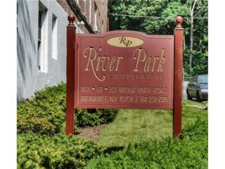 811 Bronx River Road 4J, Bronxville, NY 10708 (MLS #4714717) :: William Raveis Legends Realty Group