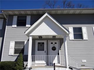 288 Hubert Humphrey Drive, Chestnut Ridge, NY 10977 (MLS #4714797) :: William Raveis Baer & McIntosh