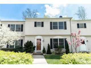 39 Lackawanna Trail, Montebello, NY 10901 (MLS #4715996) :: William Raveis Baer & McIntosh