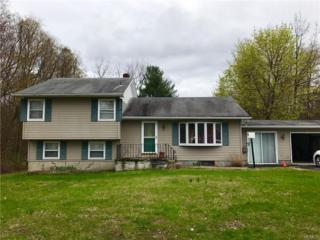 14 Lincoln Circle, Wallkill, NY 12589 (MLS #4717461) :: William Raveis Legends Realty Group