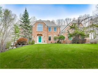 3 Diamond Court, Montebello, NY 10901 (MLS #4717579) :: William Raveis Baer & McIntosh