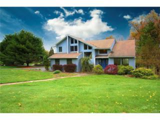 5 Amber Ridge Road, Chestnut Ridge, NY 10977 (MLS #4717833) :: William Raveis Baer & McIntosh