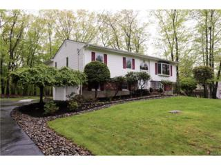 3 Twin Lakes Drive, Airmont, NY 10952 (MLS #4720182) :: William Raveis Baer & McIntosh