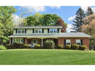 4 Angela Court, Chestnut Ridge, NY 10952 (MLS #4721366) :: William Raveis Baer & McIntosh