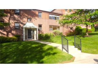 125 Beacon Hill Drive F11, Dobbs Ferry, NY 10522 (MLS #4721770) :: William Raveis Legends Realty Group