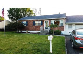 17 Walter Drive, Stony Point, NY 10980 (MLS #4722206) :: William Raveis Baer & McIntosh