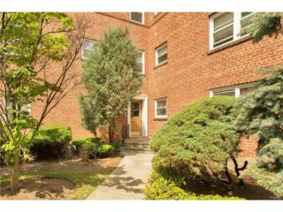 330 S Broadway F5, Tarrytown, NY 10591 (MLS #4722792) :: William Raveis Legends Realty Group