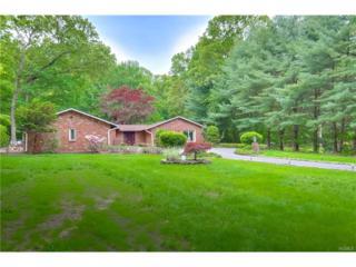139 Grotke Road, Chestnut Ridge, NY 10977 (MLS #4723157) :: William Raveis Baer & McIntosh