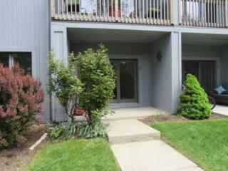 13 Hudson Point, Ossining, NY 10562 (MLS #4723191) :: William Raveis Legends Realty Group