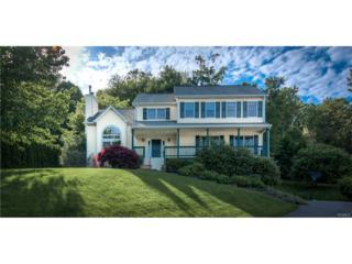 12 Ronwood Road, Chestnut Ridge, NY 10977 (MLS #4723208) :: William Raveis Baer & McIntosh