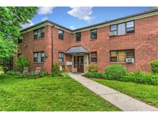 154 Martling Avenue P4, Tarrytown, NY 10591 (MLS #4723358) :: William Raveis Legends Realty Group