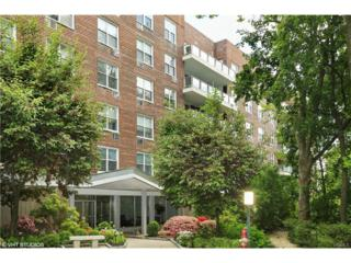 222 Martling Avenue 1N, Tarrytown, NY 10591 (MLS #4723492) :: William Raveis Legends Realty Group