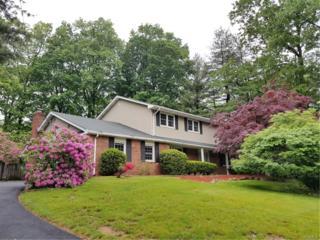 17 Fox Hill Road, Chestnut Ridge, NY 10977 (MLS #4723537) :: William Raveis Baer & McIntosh