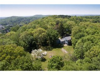 7 Deer Hill Lane, Briarcliff Manor, NY 10510 (MLS #4723570) :: William Raveis Legends Realty Group