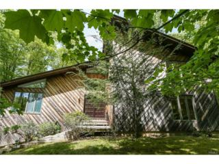 44 Westminster Drive, Croton-On-Hudson, NY 10520 (MLS #4723724) :: William Raveis Legends Realty Group