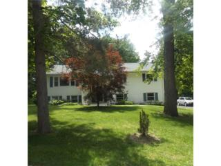 48 Lakeview Drive, Newburgh, NY 12550 (MLS #4723954) :: William Raveis Baer & McIntosh
