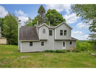 18 Old State Rt 17, Chester, NY 10918 (MLS #4724321) :: William Raveis Legends Realty Group