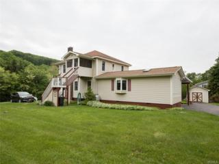 15 Derussey, Cornwall, NY 12518 (MLS #4724323) :: William Raveis Legends Realty Group