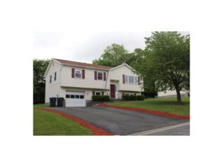 49 Amy, Middletown, NY 10941 (MLS #4724328) :: William Raveis Legends Realty Group