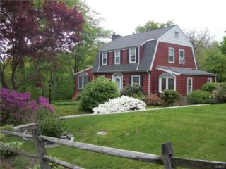 88 Sherwood Avenue, Ossining, NY 10562 (MLS #4707752) :: William Raveis Legends Realty Group