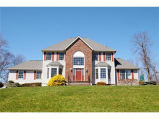 9 Nicole Way, Chestnut Ridge, NY 10977 (MLS #4714759) :: William Raveis Baer & McIntosh