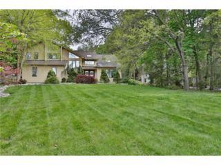 10 Amber Ridge Road, Chestnut Ridge, NY 10977 (MLS #4718614) :: William Raveis Baer & McIntosh