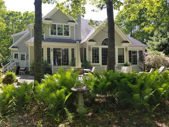 76 Inlet View Path, East Moriches, NY 11940 (MLS #3132510) :: Cronin & Company Real Estate