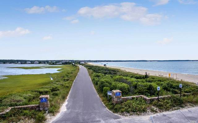 151 Cold Spring Pt Road, Southampton, NY 11968 (MLS #3155766) :: McAteer & Will Estates | Keller Williams Real Estate