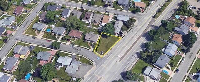 Newbridge Road, Hicksville, NY 11801 (MLS #3166567) :: Signature Premier Properties