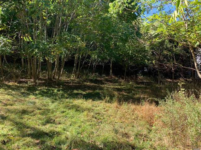 Lot 2 N Country Road, Stony Brook, NY 11790 (MLS #3175468) :: Keller Williams Points North