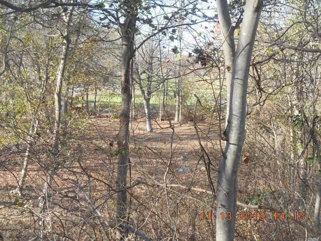 Lot 6 Oakside Drive, Smithtown, NY 11787 (MLS #3181647) :: Keller Williams Points North