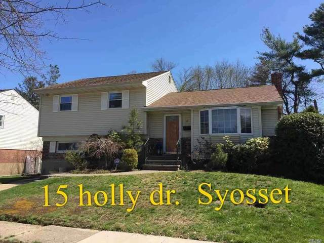 Holly Drive, Syosset, NY 11791 (MLS #3182575) :: Signature Premier Properties