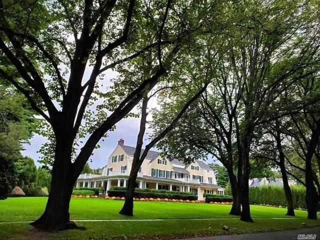 7 Carteret Place, Garden City, NY 11530 (MLS #3198614) :: Signature Premier Properties