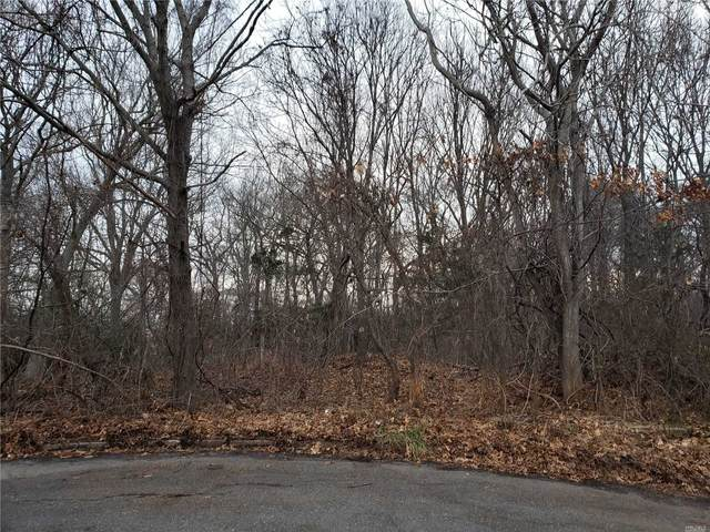 11 Enchanted Woods Court, Miller Place, NY 11764 (MLS #3199751) :: Keller Williams Points North