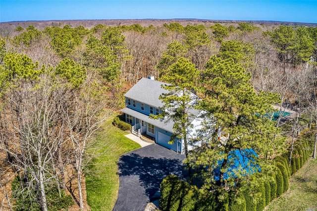 231 Chestnut Street, Pt.Jefferson Sta, NY 11776 (MLS #3210224) :: Cronin & Company Real Estate