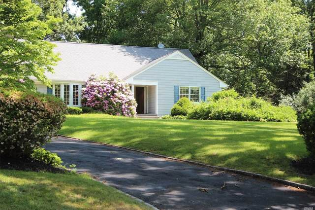 3 Cakewalk Terrace, Smithtown, NY 11787 (MLS #3210269) :: Signature Premier Properties