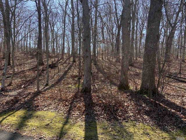 9 Willow Pond Lane, Shelter Island, NY 11964 (MLS #3213265) :: Marciano Team at Keller Williams NY Realty