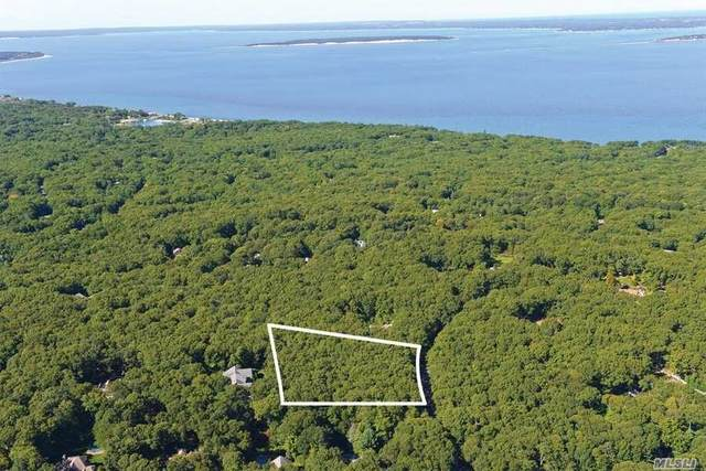 16 Rolling Hill Court W, Sag Harbor, NY 11963 (MLS #3216501) :: Cronin & Company Real Estate