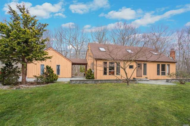 101 Mount Grey Road, Setauket, NY 11733 (MLS #3217123) :: Cronin & Company Real Estate