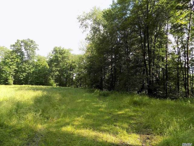 271 Beeman Hill Road, Out Of Area Town, NY 13778 (MLS #3217678) :: Cronin & Company Real Estate