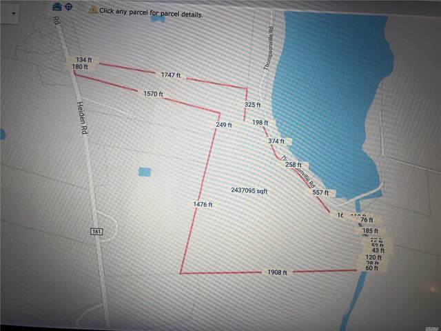 0 Heiden Road, Thompson, NY 12779 (MLS #3218257) :: Mark Boyland Real Estate Team