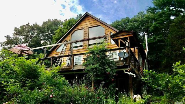 87 Old Minisink, Barryville, NY 12719 (MLS #3218377) :: Cronin & Company Real Estate