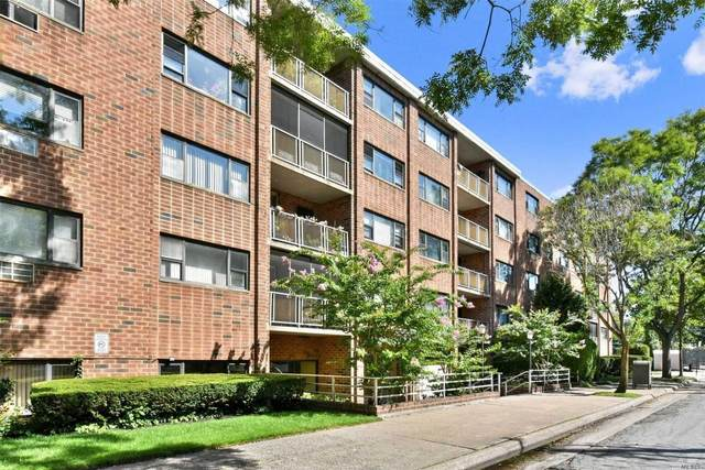 100 Clinton Avenue 3S, Mineola, NY 11501 (MLS #3218397) :: Cronin & Company Real Estate