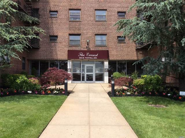 202-35 Foothill Avenue A46, Hollis, NY 11423 (MLS #3220105) :: William Raveis Legends Realty Group