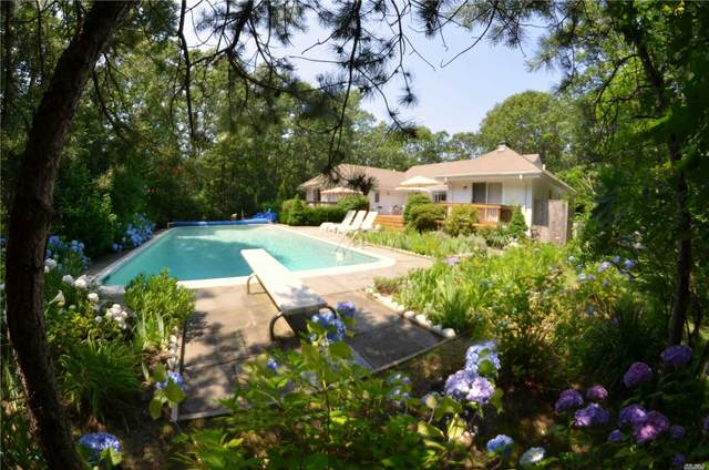 14 N Quarter Road, Westhampton, NY 11977 (MLS #3225554) :: William Raveis Baer & McIntosh