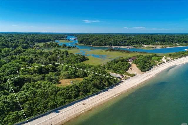 1900 Bailie Beach Rd, Mattituck, NY 11952 (MLS #3229177) :: Marciano Team at Keller Williams NY Realty