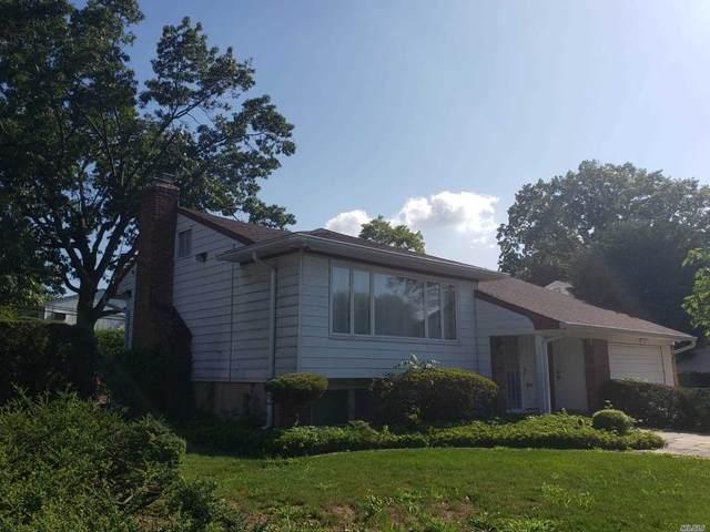 381 Old Courthouse Road, New Hyde Park, NY 11040 (MLS #3239986) :: Frank Schiavone with William Raveis Real Estate